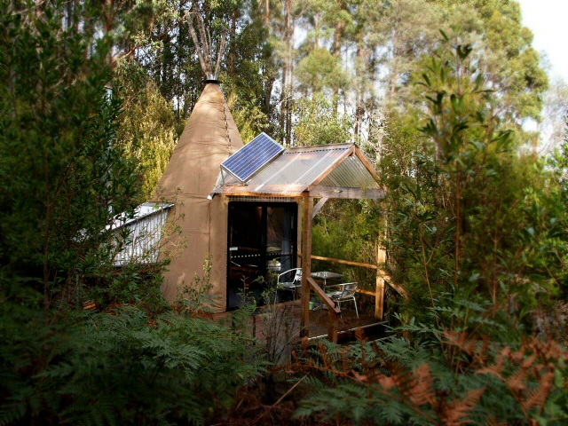Each tipee is set in its own individual forest setting